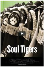 "GLAMOUR REEL DOC SERIES ""Soul Tigers"" tall"